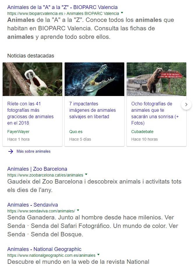 Serps Google para animales